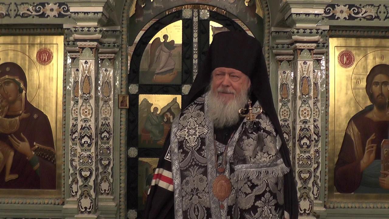 Епископ Августин (Анисимов): Истоки и суть церковной жизни